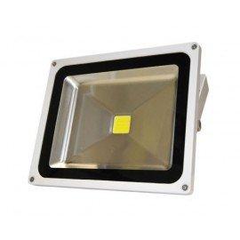 Projecteur de pont à LED 30W (12/24V DC)