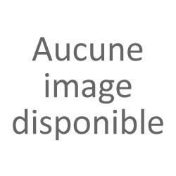 DABS NAUTIC Régénérant Gelcoats 230g